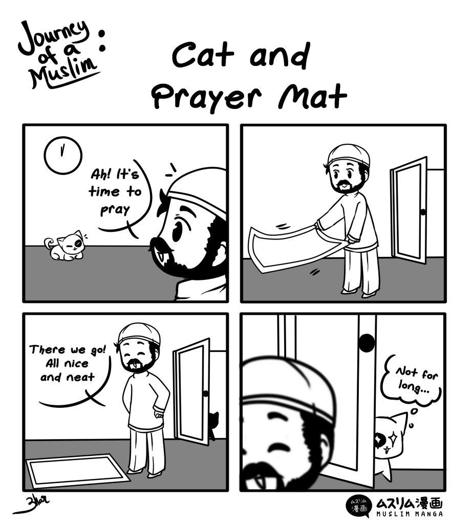 cat and prayer mat