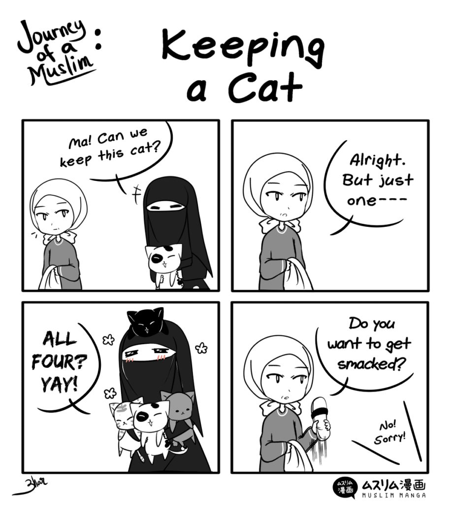 keeping a cat